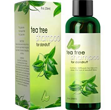 Honeydew Tea Tree Shampoo